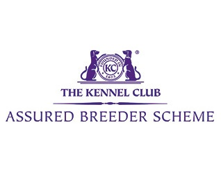KENNEL CLUB ASSURED BREEDER SCHEME GIVEN DEFRA SEAL OF APPROVAL FOLLOWING KENNEL CLUB SURVEY