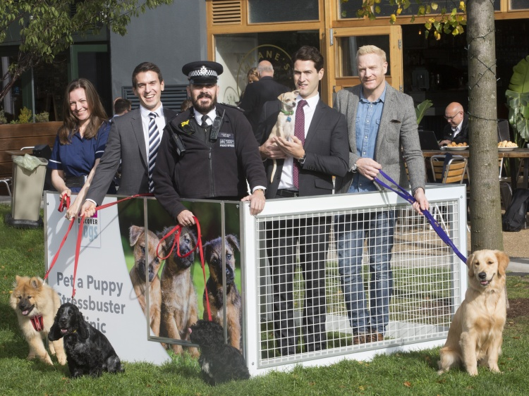 Kennel Club Insight-October