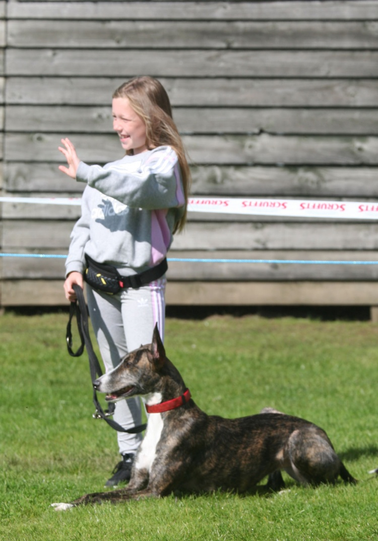 NOMINATIONS OPEN FOR MAJOR CRUFTS AWARD THAT RECOGNISES OUTSTANDING YOUNG PEOPLE