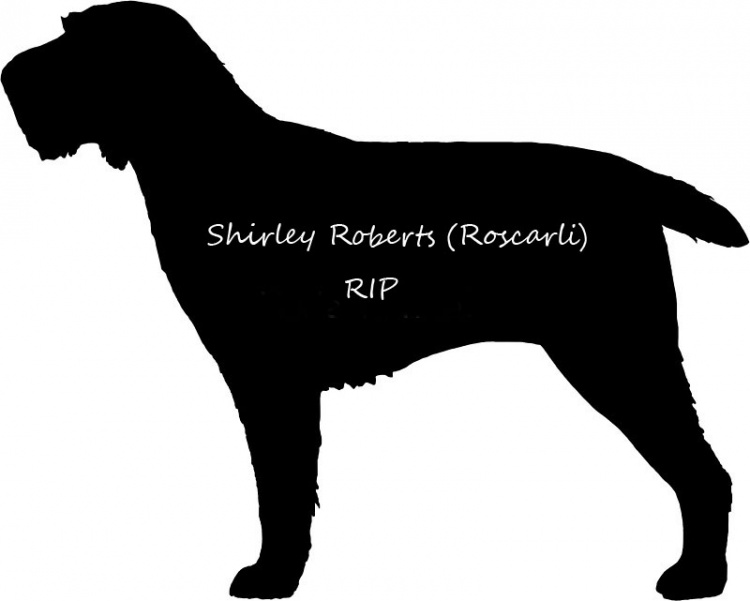 Obituaries: Shirley Roberts (Roscali)