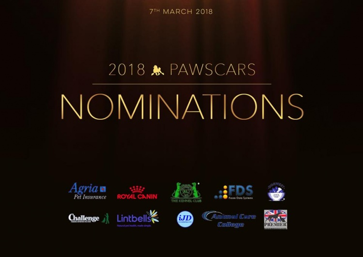 Pawscars Voting Opens