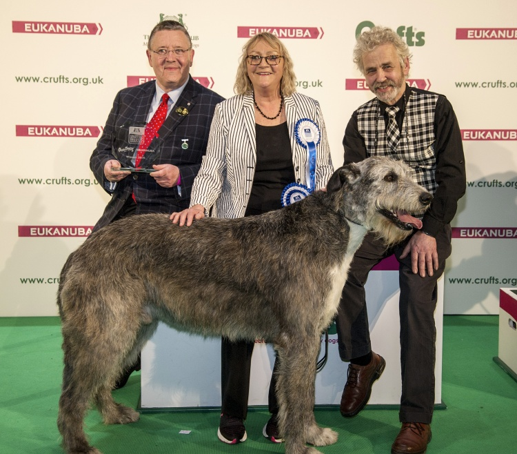 VULNERABLE BRITISH AND IRISH BREEDS COMPETITION RETURNS