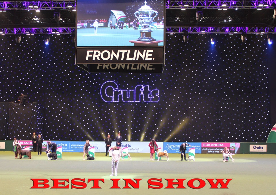 CRUFTS: BEST IN SHOW & ROUNDUP 11th March 2018