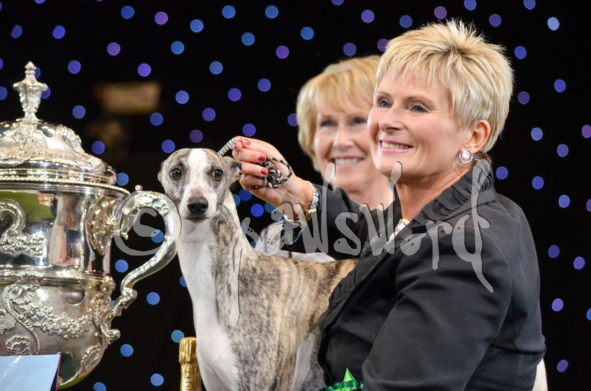 Best in show 11th March 2018
