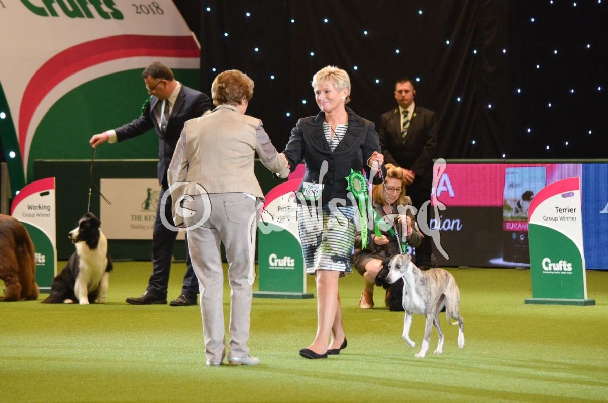 ...and In First Place And Best In Show At Crufts 2018 Is...